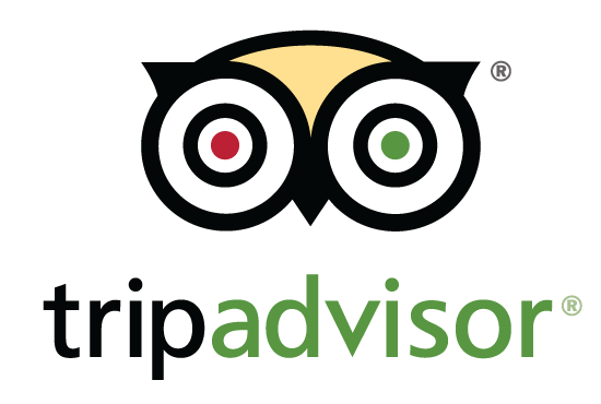 Image result for trip advisor logo