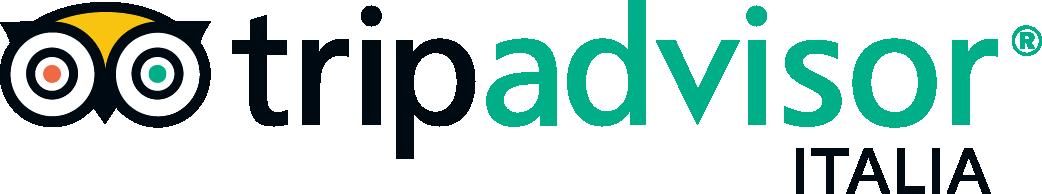 Risultati immagini per logo trip advisor