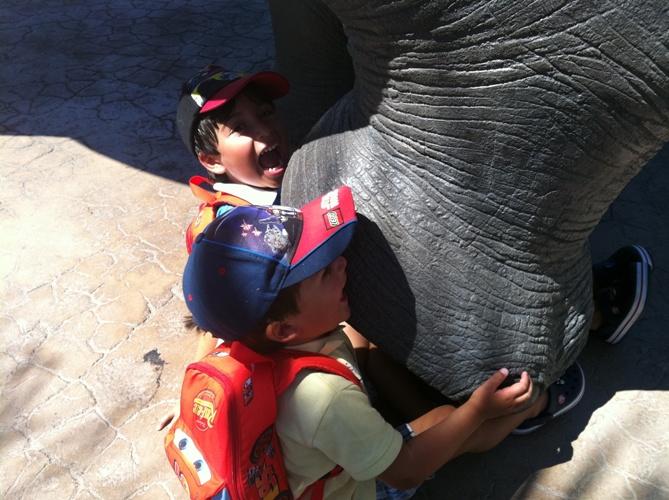 San Diego para crianças
