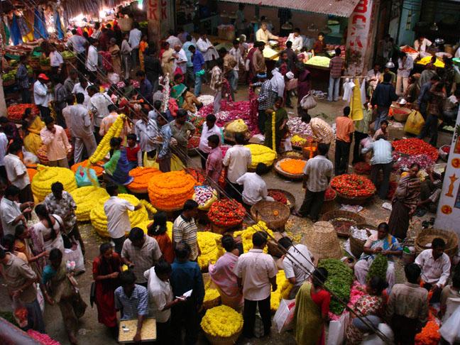 3 días en Bangalore