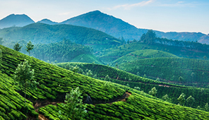 Rentals in Kerala
