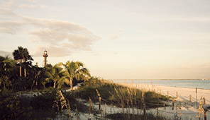 Rentals in Sanibel Island